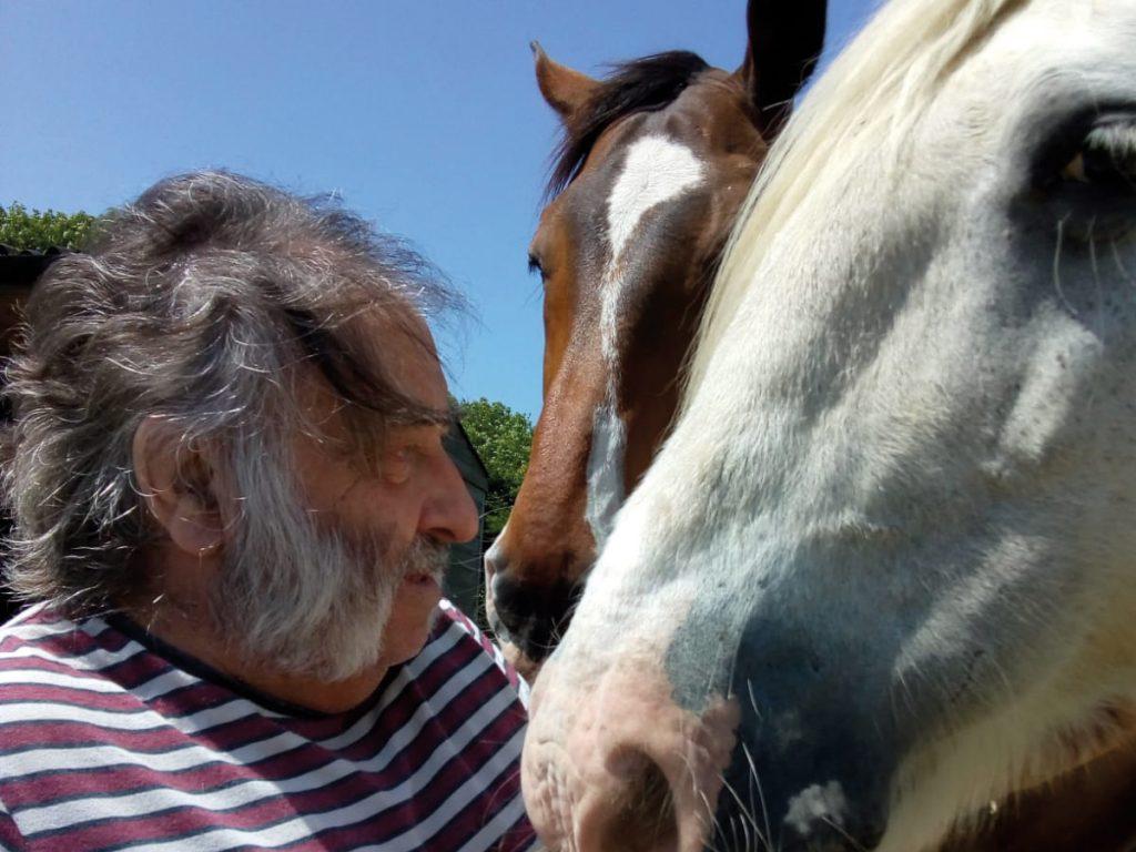 Rodney and horses